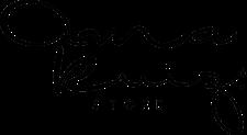 Anna Ruiz Store logo