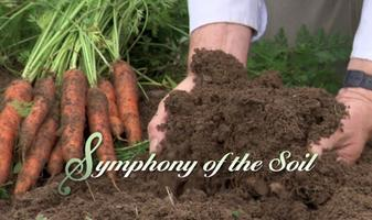 "The film ""Symphony of the Soil"" presented by Director..."
