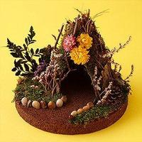 Create a Fairy or Elf House Craft for Autumn and Decora...