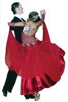 Ballroom,latin,salsa dance class for adults or kids...