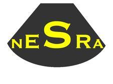NORTH EAST SOCIETY OF REGIONAL ANAESTHESIA (NESRA) logo
