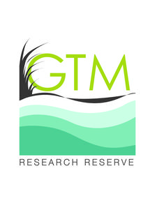 GTM Research Reserve logo