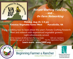 Tomato Grafting Field Day & On-Farm Networking...