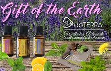 Pure Essential Oils for Families logo