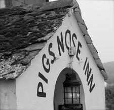 Pigs Nose Inn logo