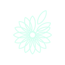 The Daisy Patch logo