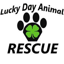 Lucky Day Animal Rescue logo