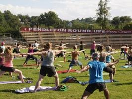 2014 Yoga Round-Up, LLC