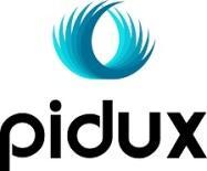 Victor Aladekomo, Partner at Pidux Limited logo