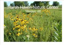 Marsh Haven Nature Center logo
