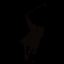 City Polo Inc, logo
