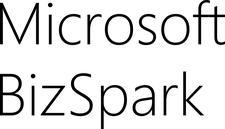 Microsoft BizSpark Team logo