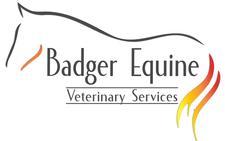 Badger Equine Veterinary Services logo