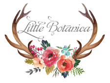 Little Botanica logo