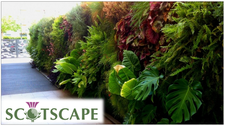 Scotscape Landscaping Ltd logo