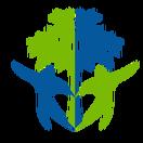 Humanitarian Social Innovations logo