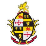 Dulaney High School logo