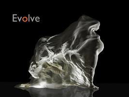 Evolve... a woman's journey - Opening Night