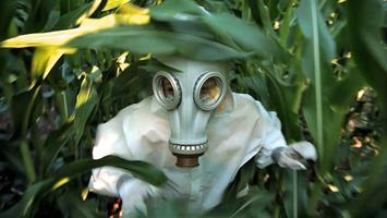 Southern Circuit: GMO OMG