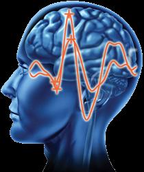 Loftus Neurological Technologies, LLC logo