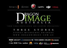 Dragon Image - Sydney  logo