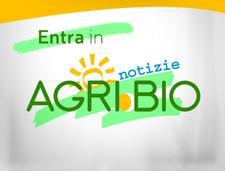 Agri.Bio.Piemonte ONLUS logo