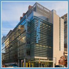 Center for New York City Law logo