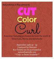 Cut Color Curl