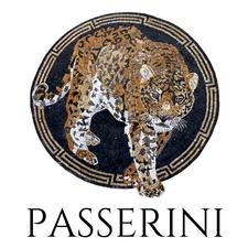 Passerini Ltd  logo