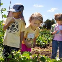 Whole Foods Market - Full Circle Farm Gardening (Kids...