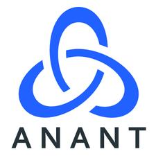 Anant Corporation logo