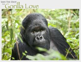 GORILLA LOVE!  A Benefit for the Gorilla Doctors