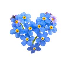 Forget Me Not Advocacy Group logo