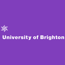 University of Brighton Professorial Series logo