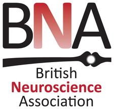 The British Neuroscience Association logo