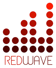REDwave Connections (Nick Voronkov - 720.606.9847) logo