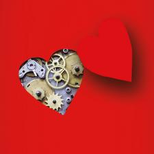 I Meccanismi di Innamoramento logo