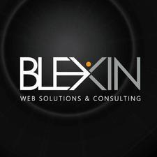 BLEXIN SRL logo