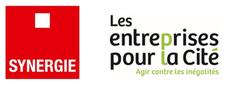 La Mission Égalité professionnelle F/H du Groupe Synergie logo