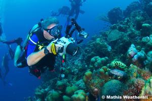Scuba Club Social - Underwater Photography 101