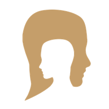Duplicate Success Organization  logo