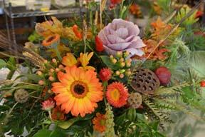 Seasons: Fall Flowers with Laura