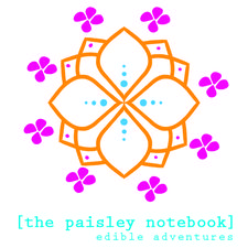 The Paisley Notebook logo