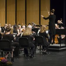 Buffalo Community Orchestra logo