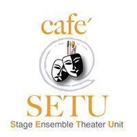 SETU logo