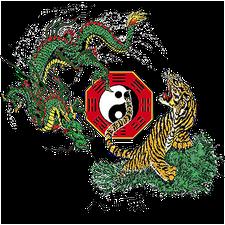 Body Mind Systems® logo