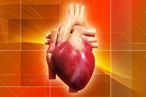 Healing Your Broken Heart:  Heart Disease & the Great...