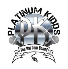 Platinum kids logo