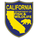 Salmon Tours on the Lower Yuba River
