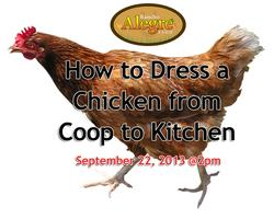 Chicken School: Learn How Dress a Chicken from Coop to...